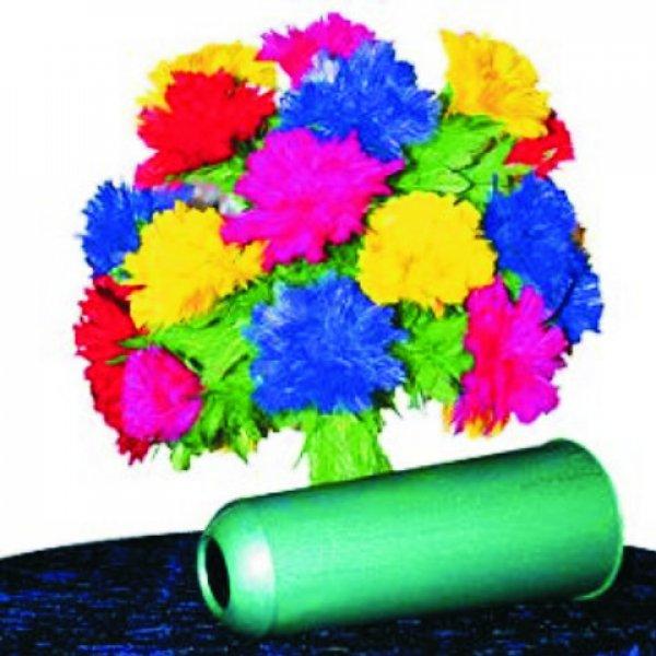 Botania 28 flores