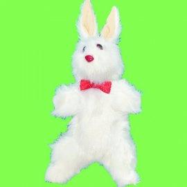Conejo de producción